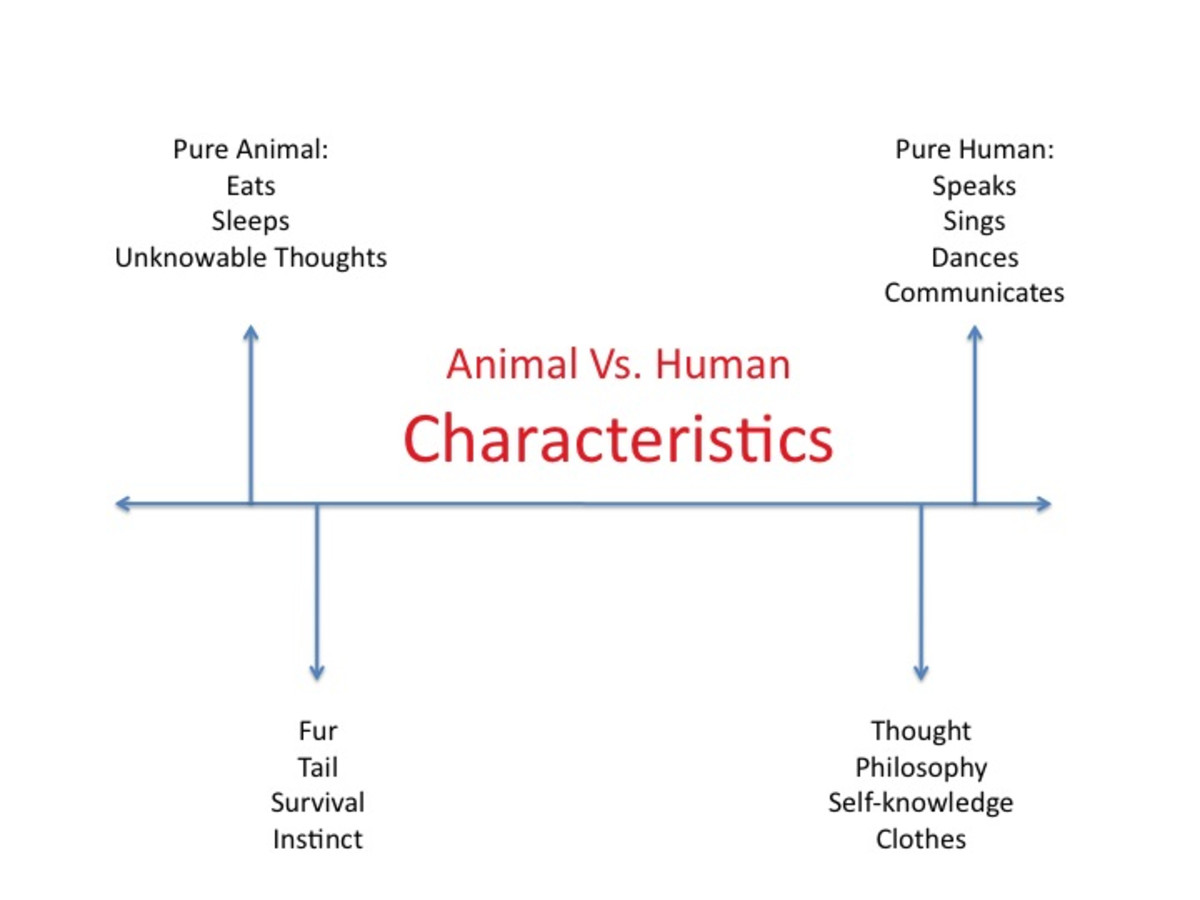 Sliding Scale of Human and Animal