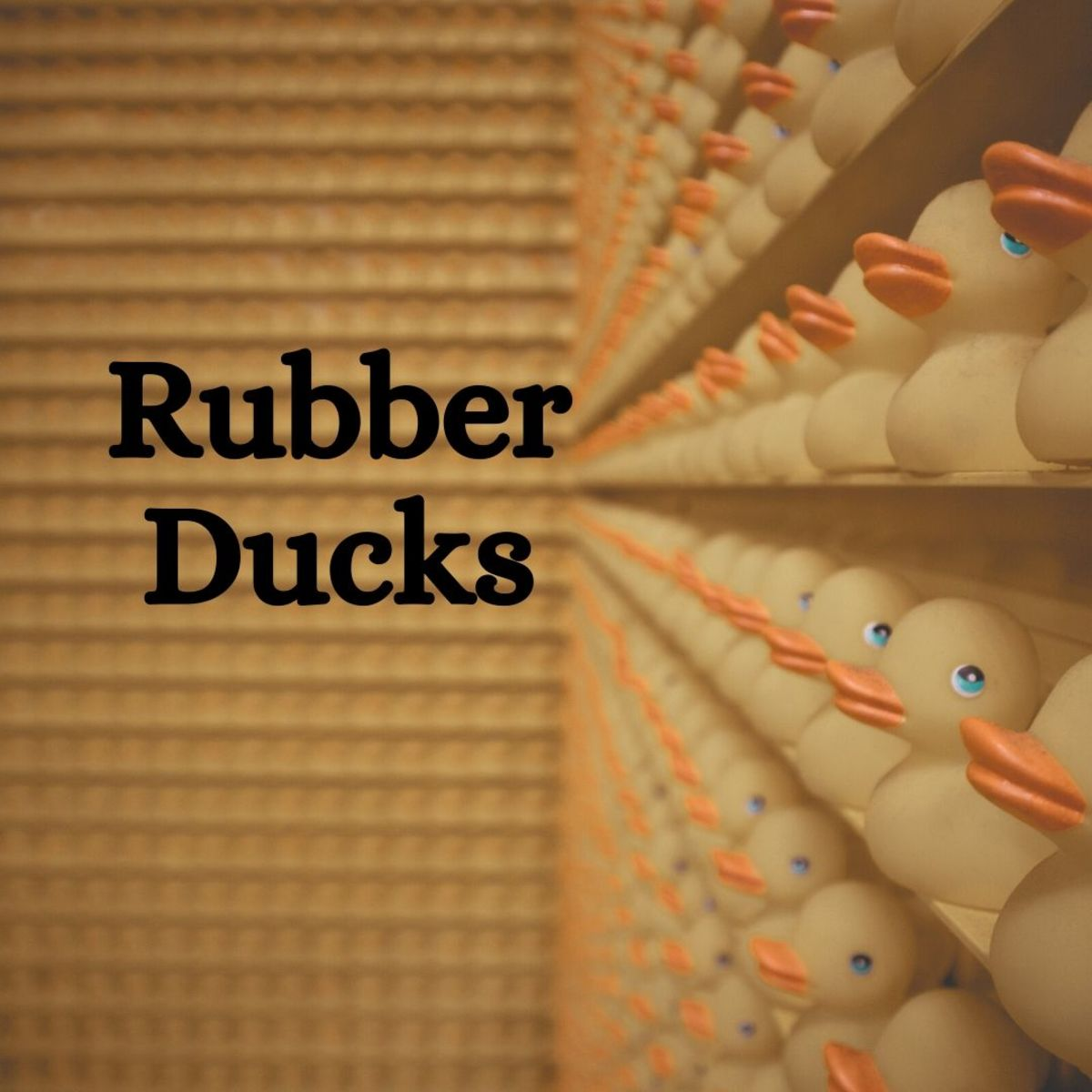 Want to collect something a bit more... unique? Why not start a rubber duck collection?