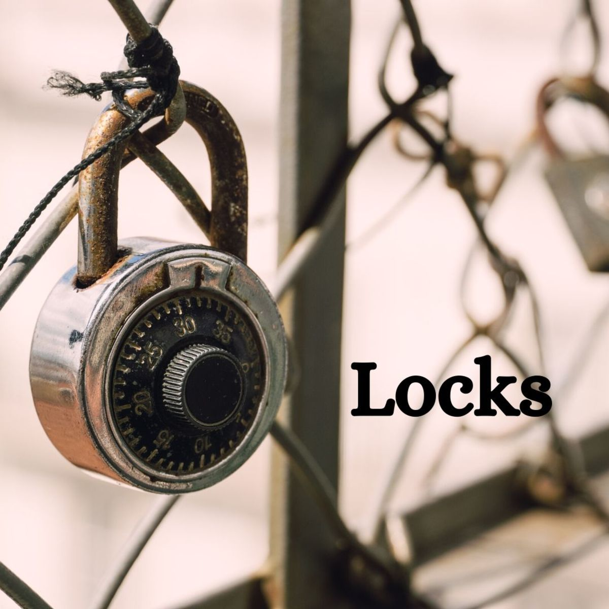 There are all kinds of locks. You can choose to collect them all, or just focus on one type (like padlocks).