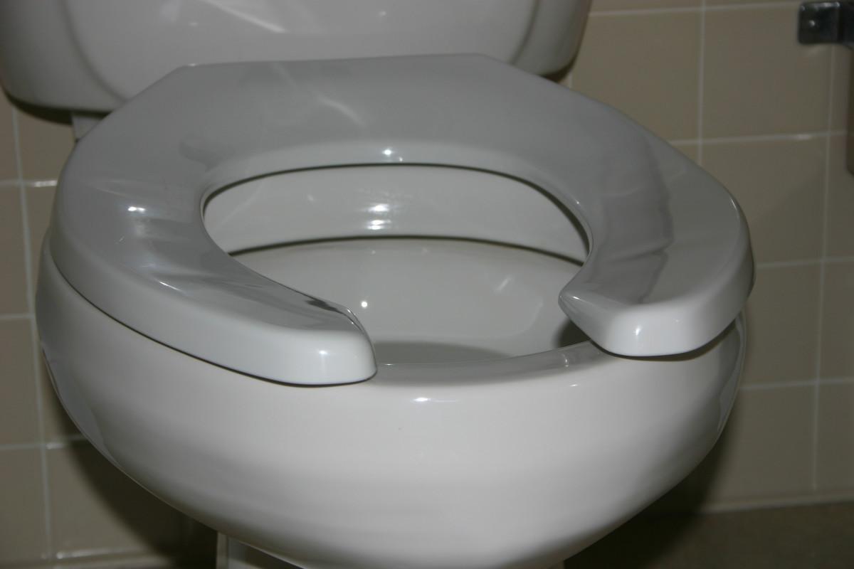 Toilet suitable for redneck games
