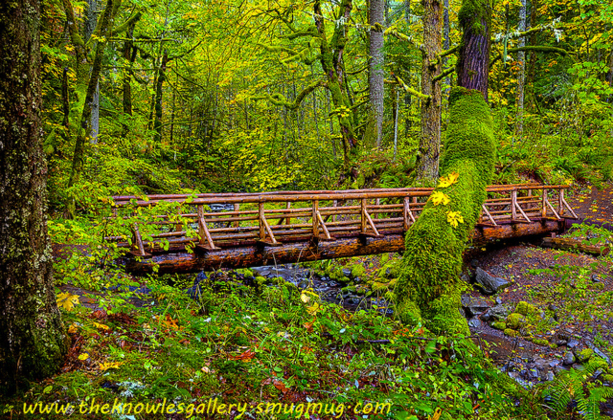 Gorton Creek Oregon