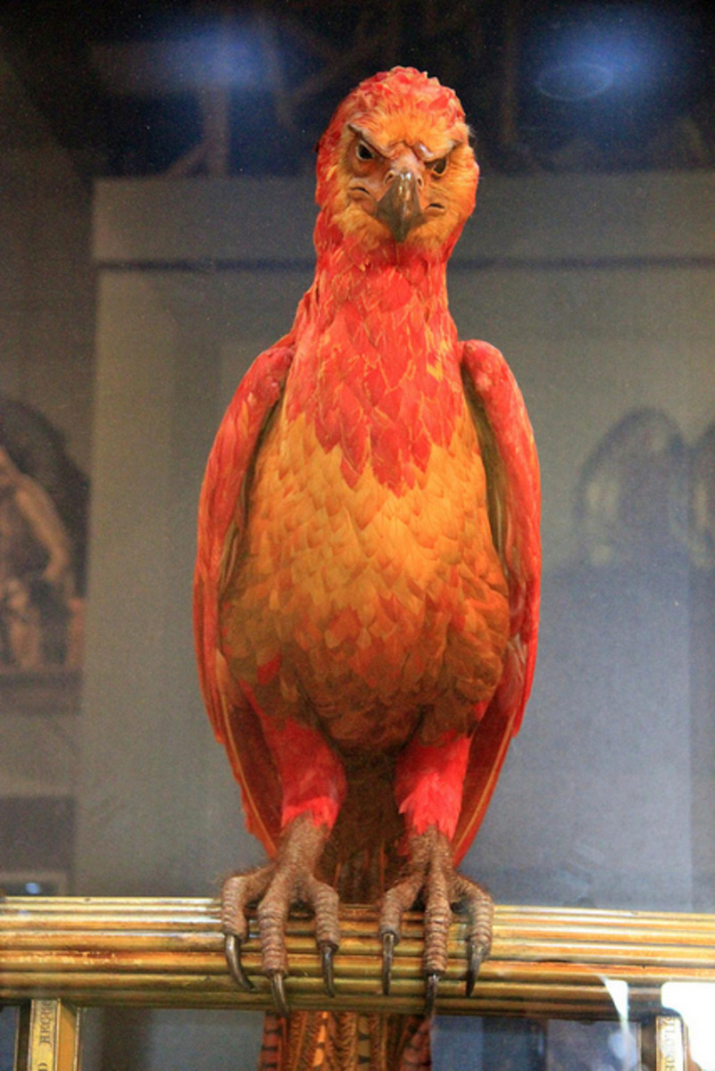 Fawkes is one of many mythical creatures in the Harry Potter universe that comes to his aid.