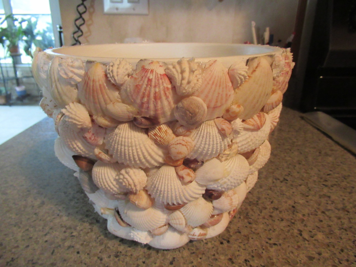 Flower pot covered with shells collected at Indian Rocks Beach