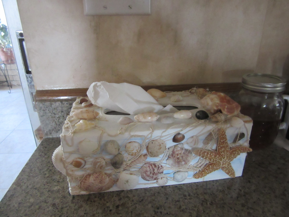 I base painted a wooden tissue box. Then glued on some netting. Added my favorite shells to create something very original