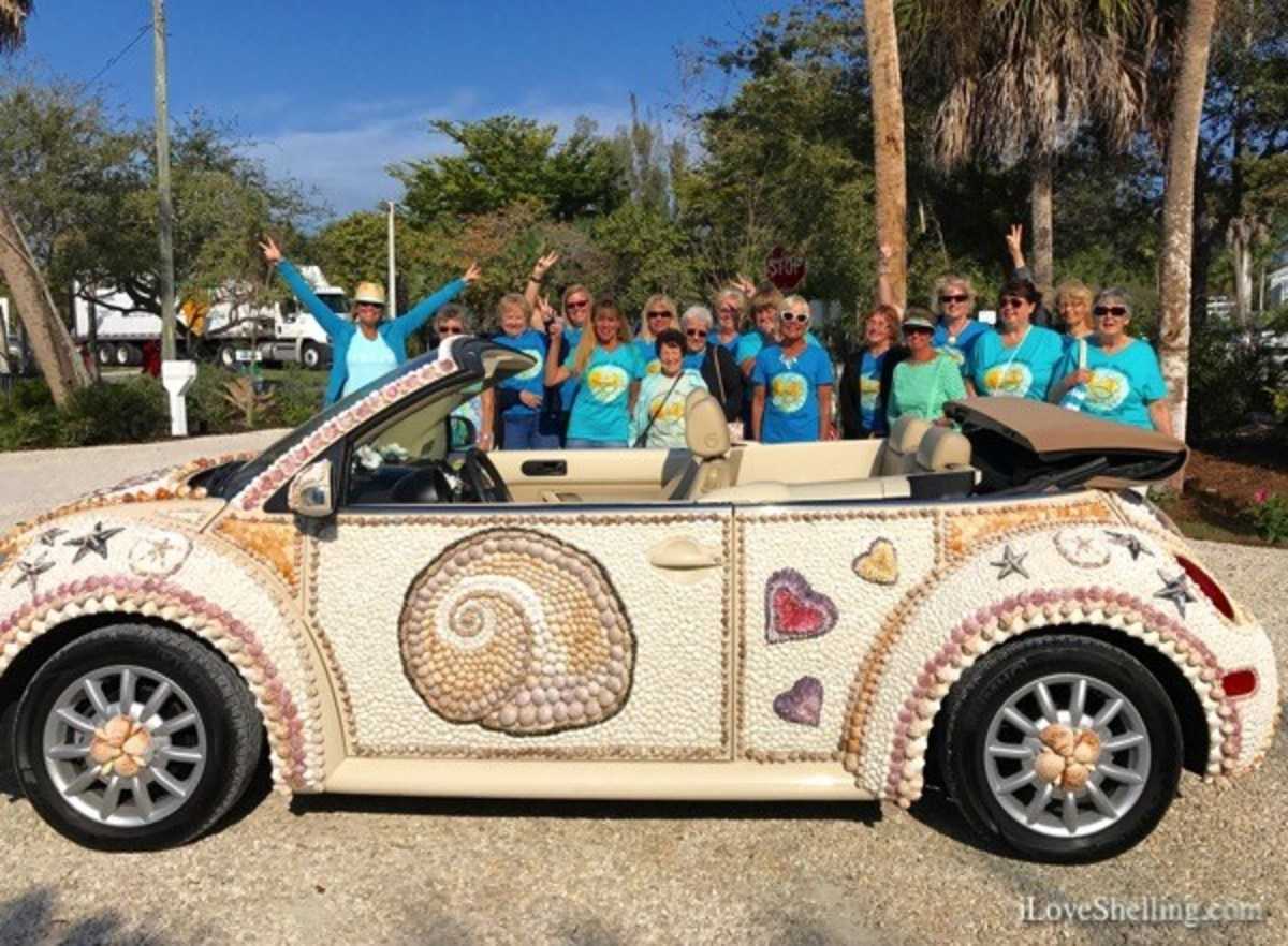 Have you ever seen a seashell car?