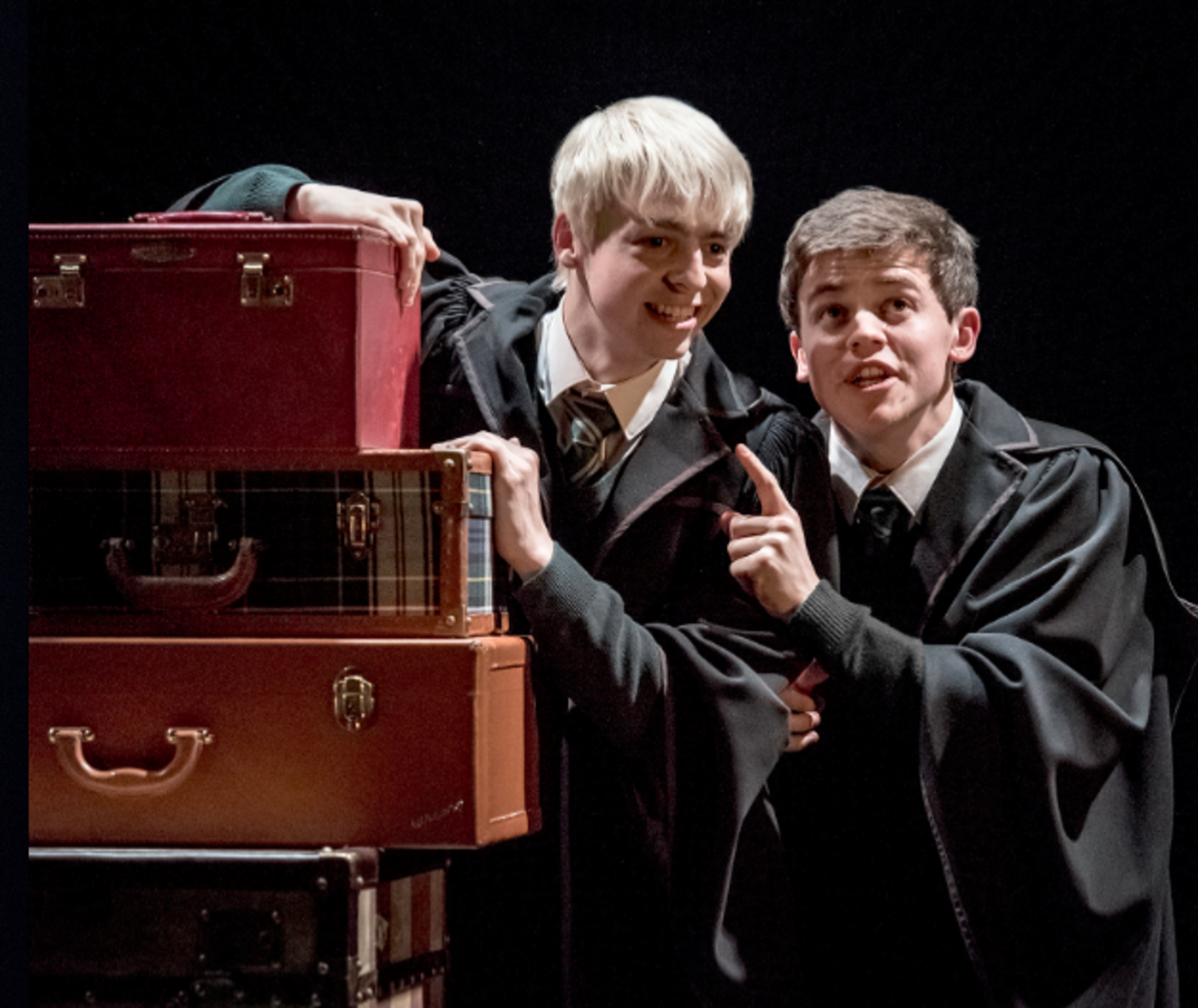 Harry Potter and the Cursed Child Script Review   HobbyLark