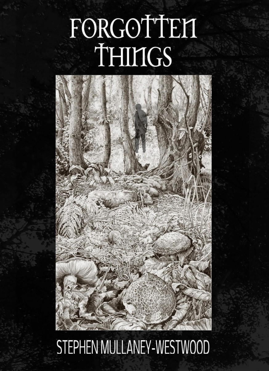 book-review-forgotten-things
