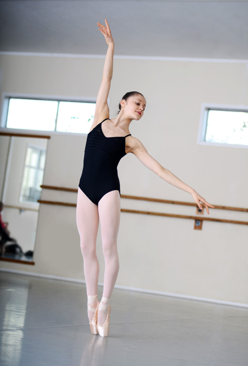 Ballet Barre For Home Studio