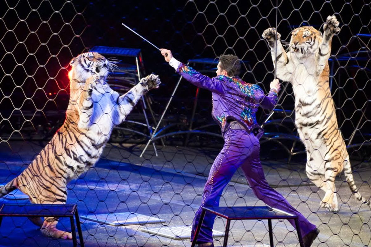 Alexander Lacey in The Dance. Ringling Bros. and Barnum & Bailey presents Dragons (2012-2014)