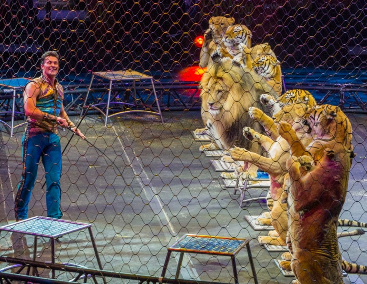 Alexander Lacey and friends.  Ringling Bros. and Barnum & Bailey presents Legends (2014-2016)