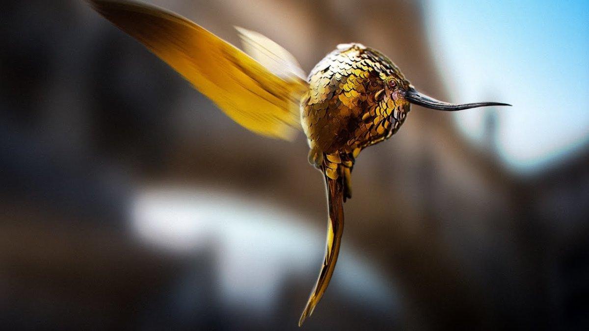 A Golden Snidget