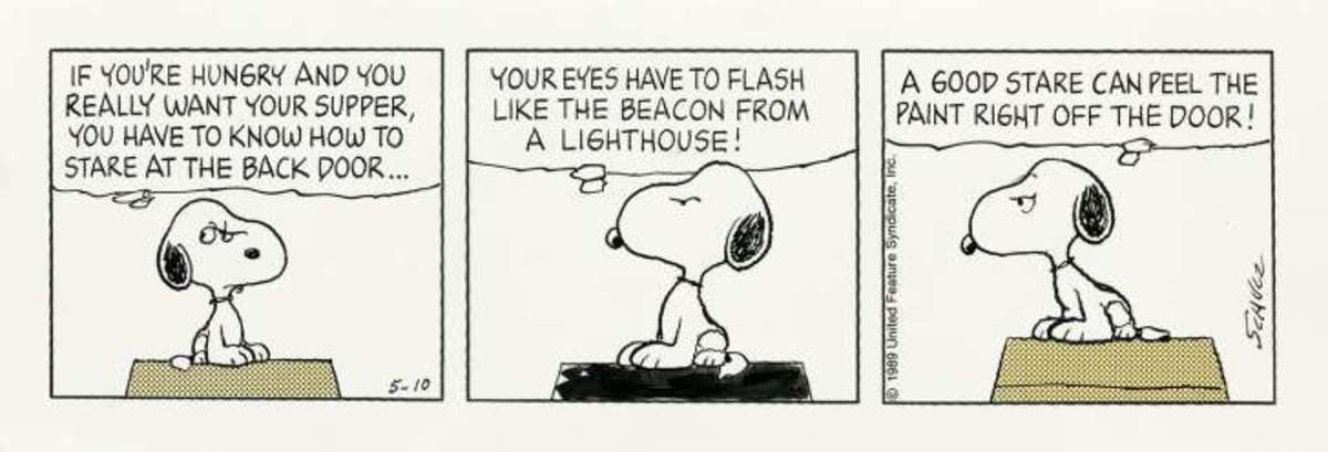"In 2000, the last original ""Peanuts"" comic strip was published."