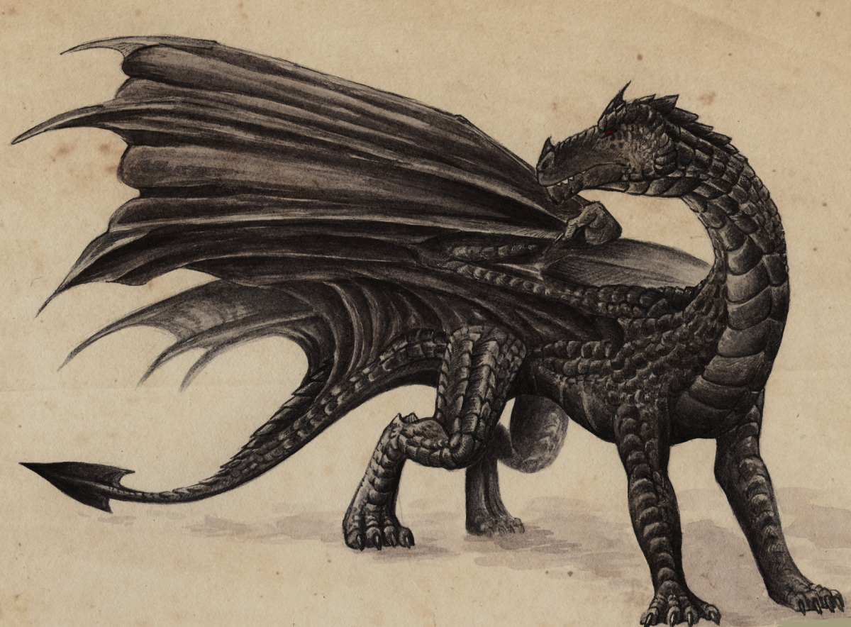 Hebridean Black Dragon