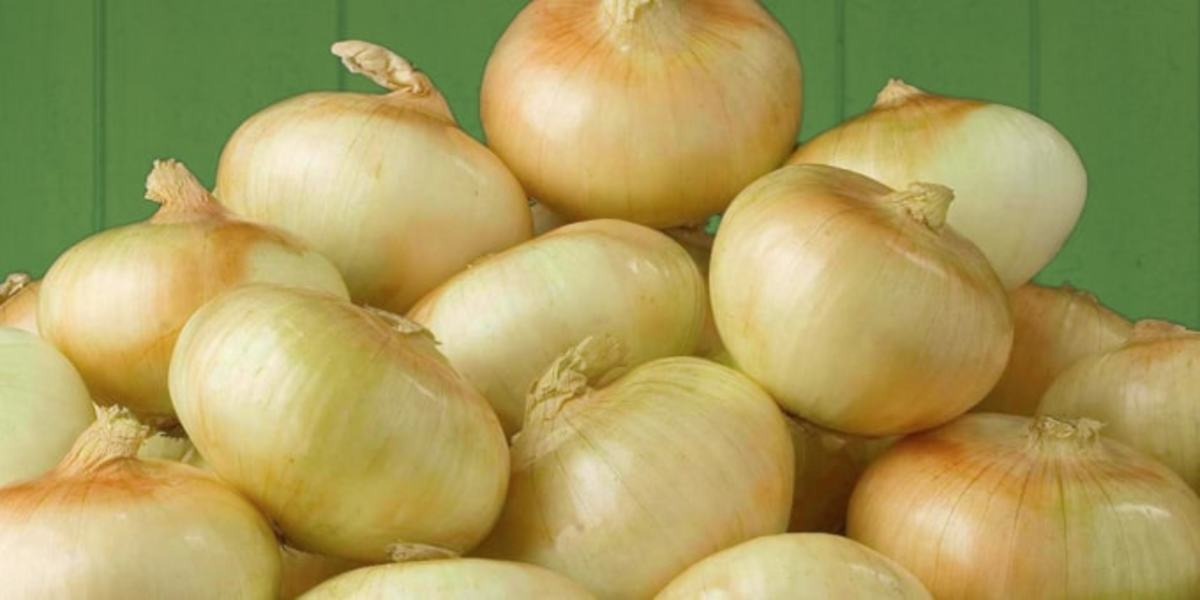 In 2002, Vidalia onions cost $1.49 for a two-pound bag.