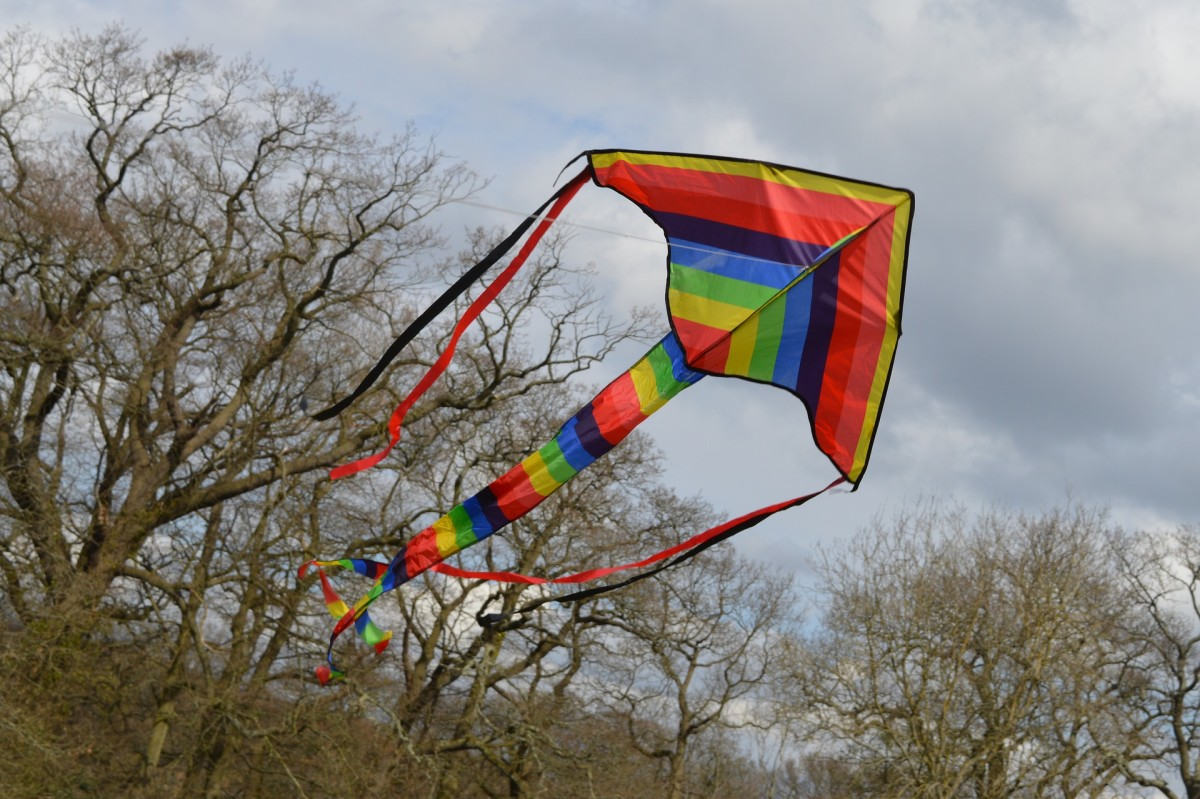 Dragon kite with tail and wing streamers.