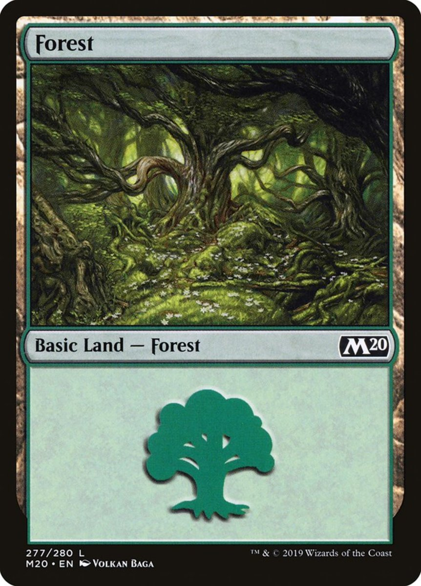 Forest mtg