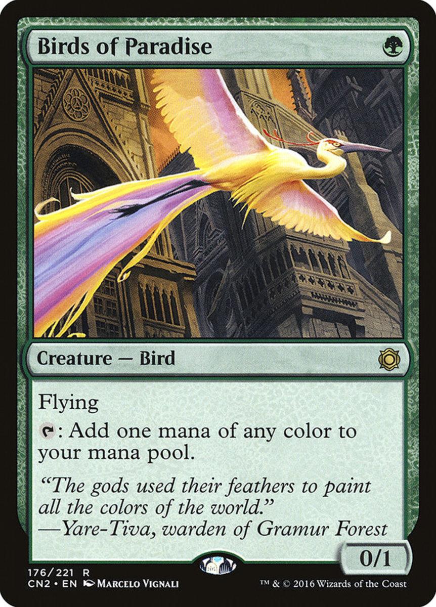 Birds of Paradise mtg
