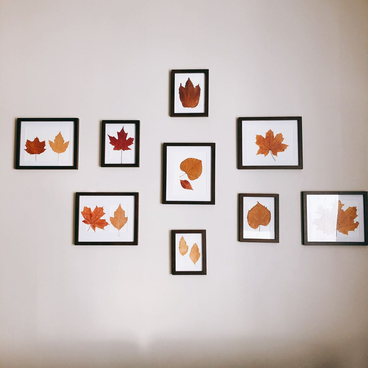 I made these wall decors using some of dried leaves I picked during fall.