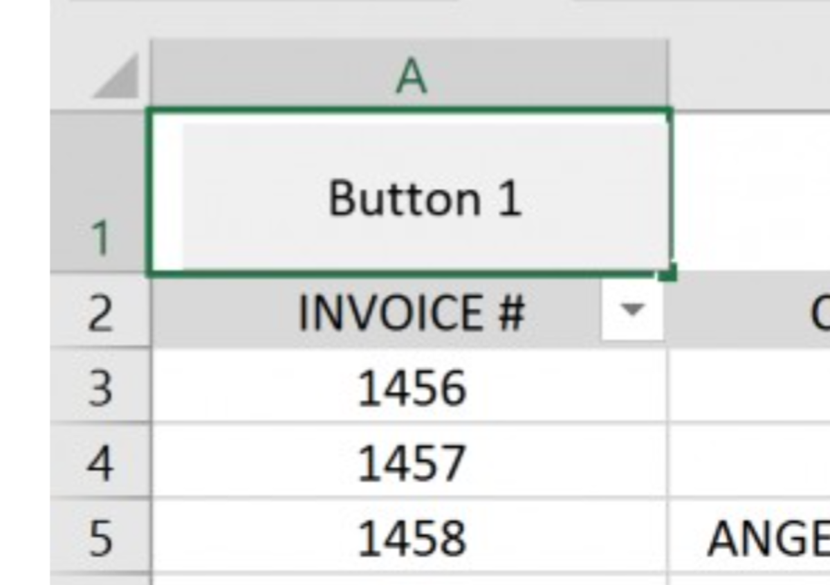Create a Macro Button in MS Excel 2016 to Filter Data