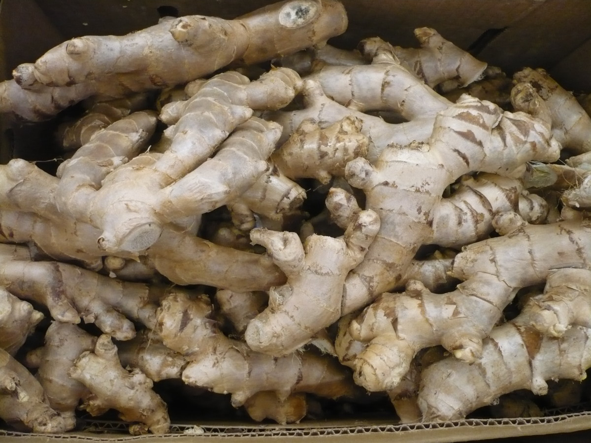 Ginger is a cure-all for a majority of stomach ailments including morning sickness.