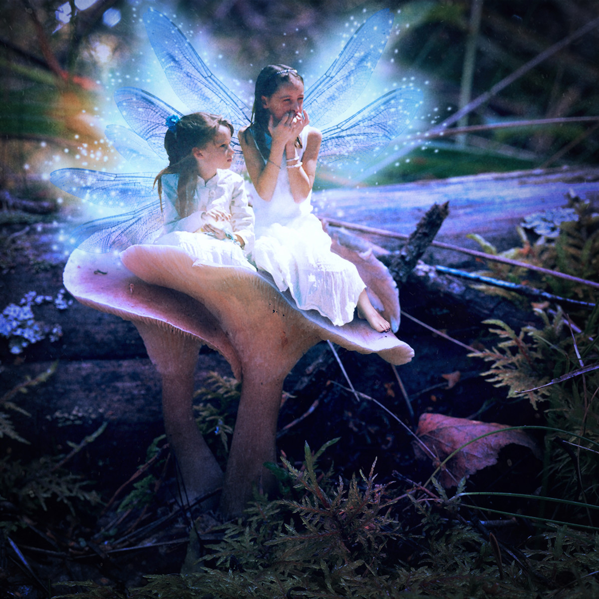 Fairy Sisters, created from a photo I took at church.