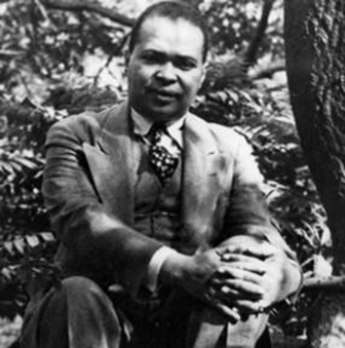 "Analysis of Poem ""Yet Do I Marvel"" by Countee Cullen"
