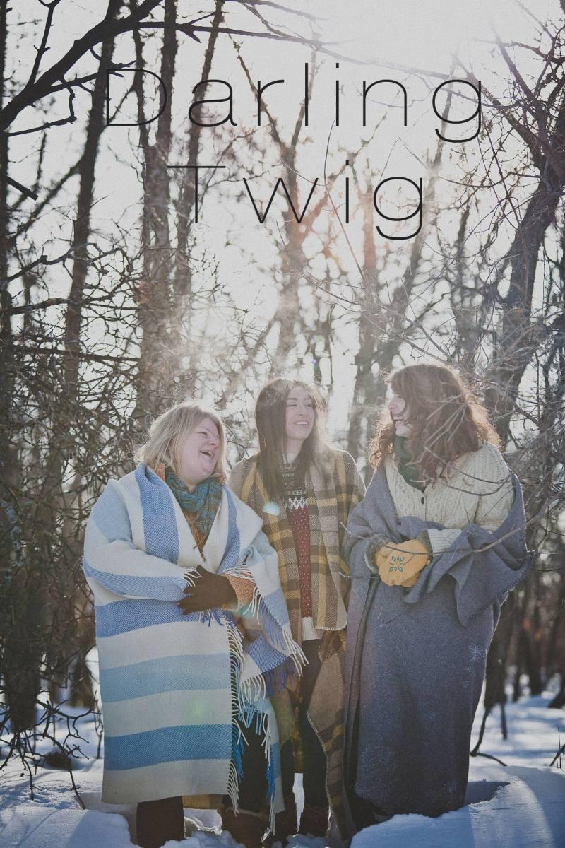 Darling Twig: Canadian Folk/Roots Band Profiled
