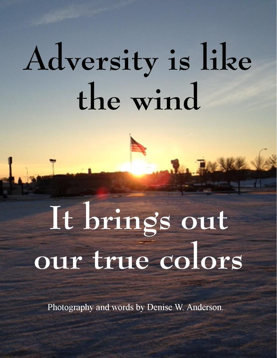 Types of Adversity