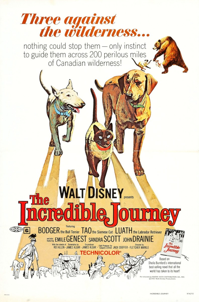 Film Review: The Incredible Journey