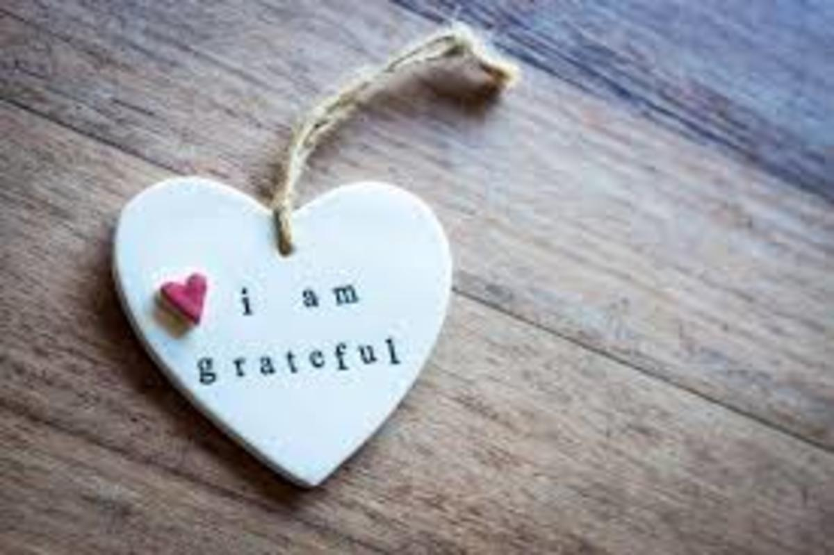 The Gratitude Attitude: Counting Your Blessings Even When You're a Nickel Short of Buying a Cup of Coffee