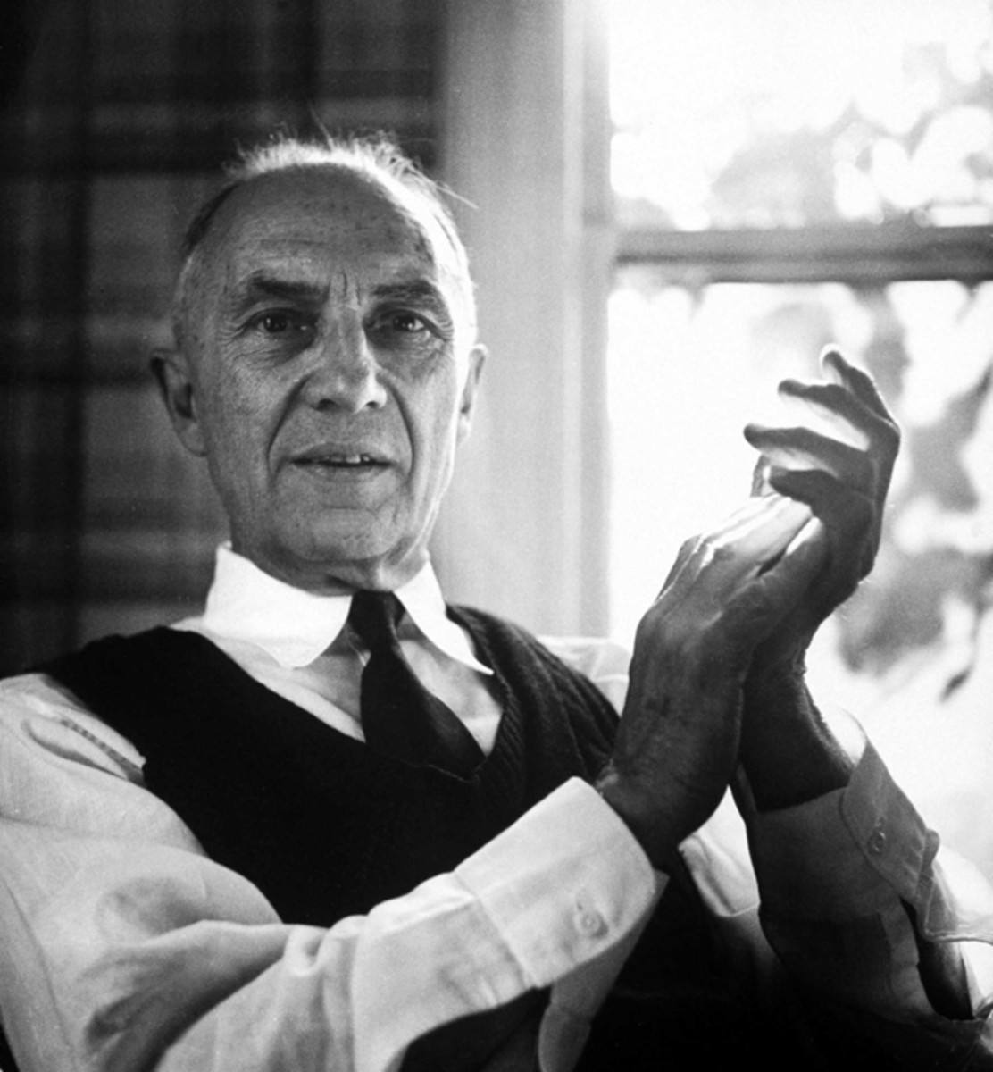 "Analysis of Poem ""To A Poor Old Woman"" by William Carlos Williams"