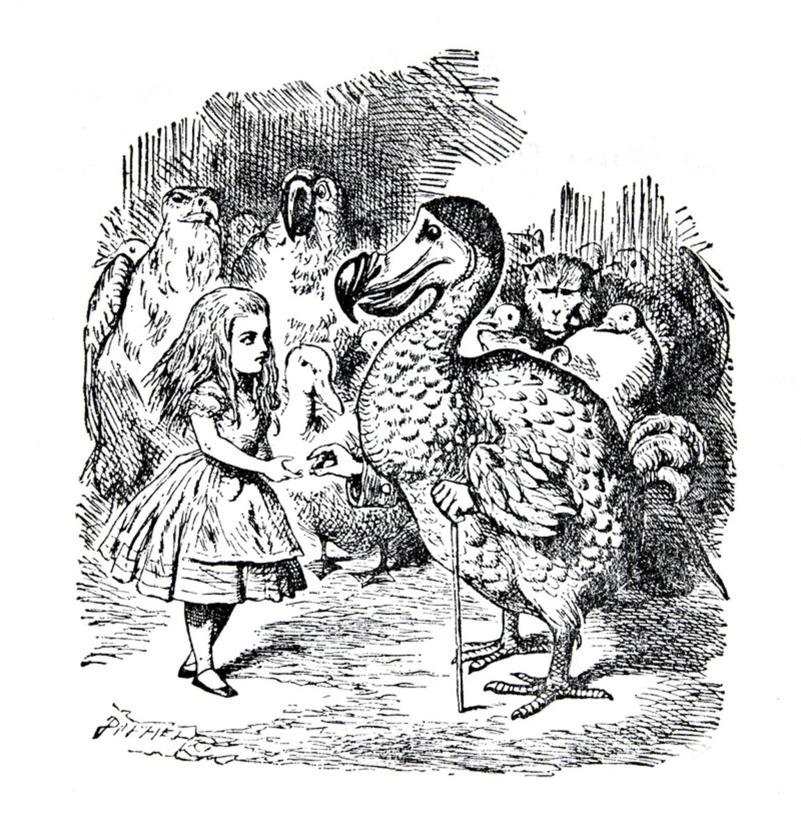 Alice's Animals in Wonderland