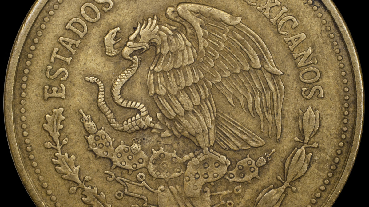 Detail of Mexican Coin