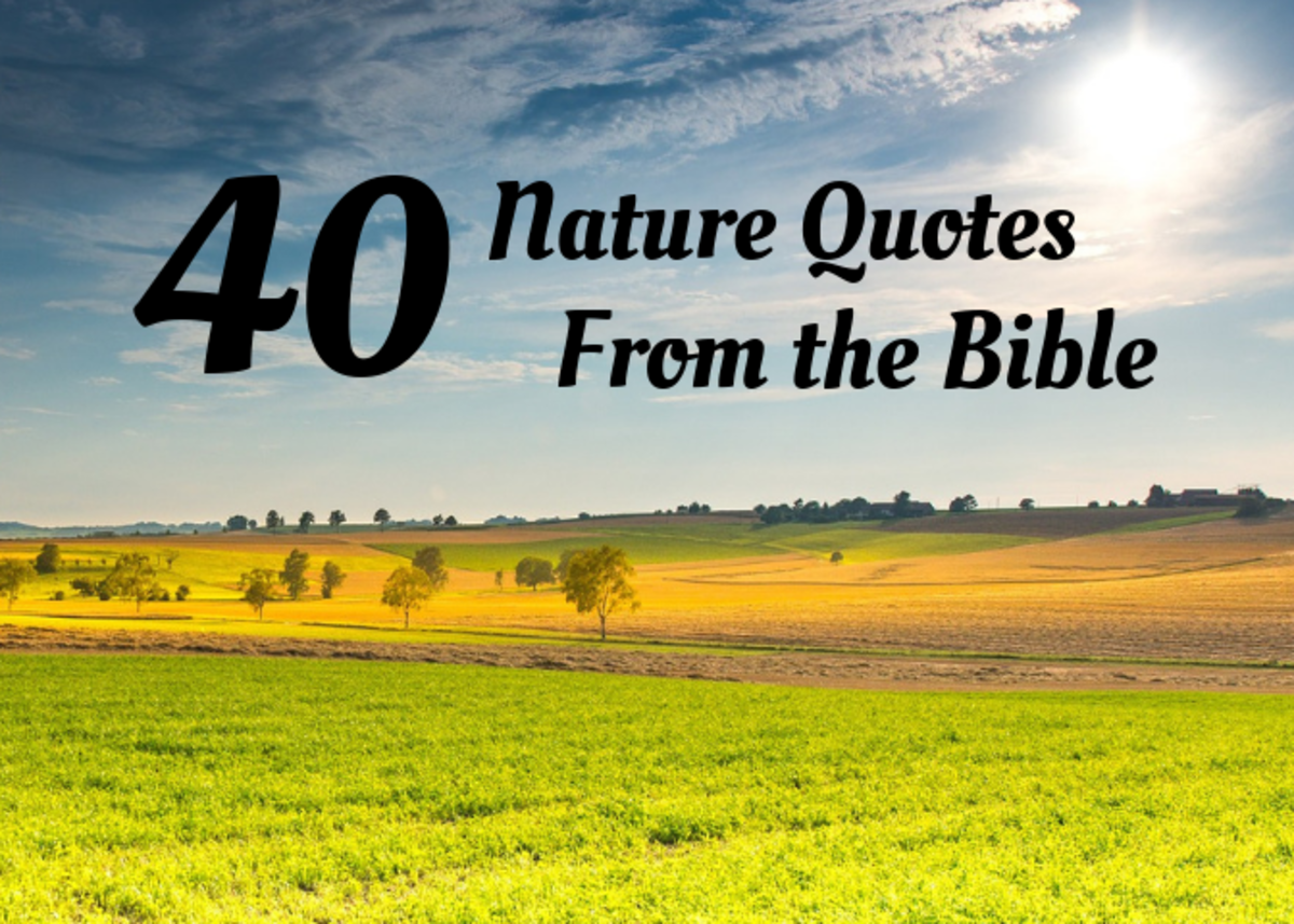 Review 40 nature-themed quotes to incorporate into the Christian classroom.