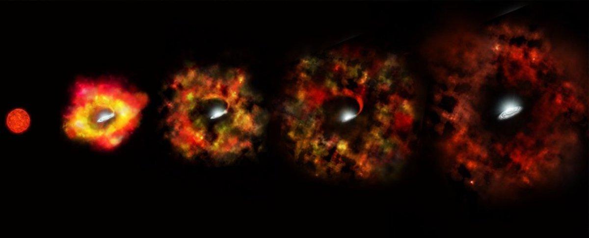 What Are Unnovae, or Failed Supernovas?