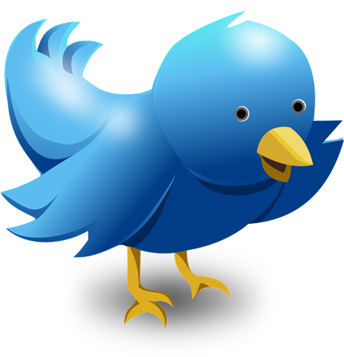 Are you part of the conversation? The Twitter logo is a bluebird.