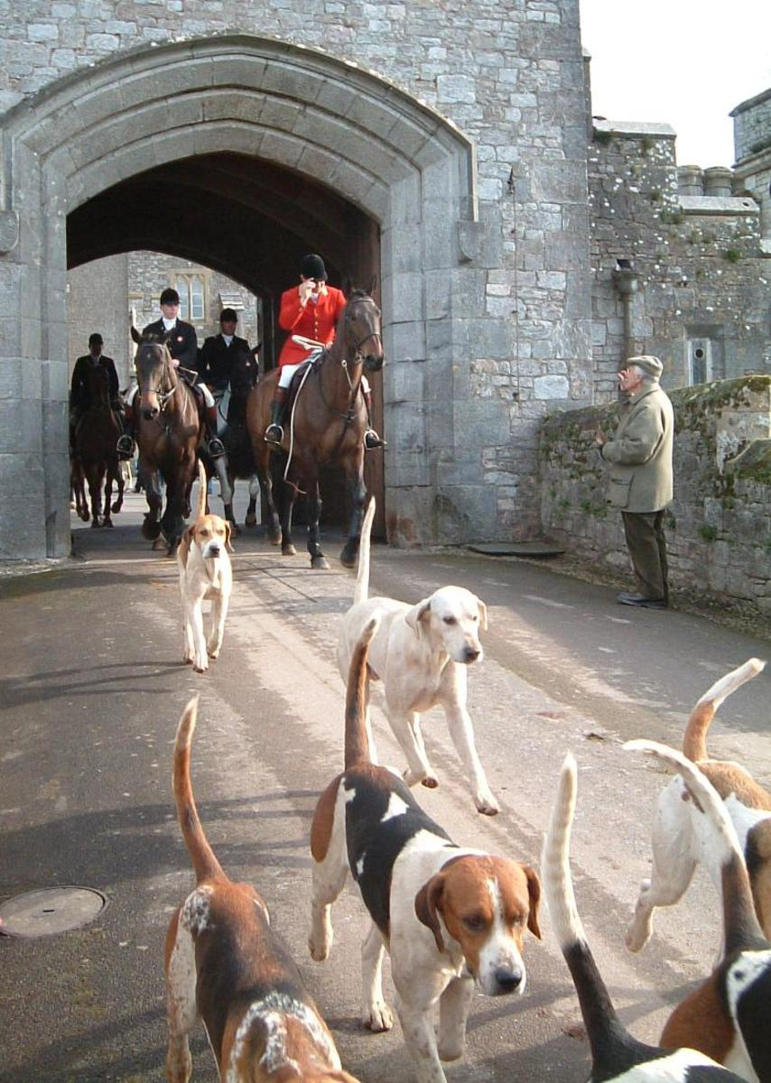Picture of huntsman and hounds exiting castle for a hunt.