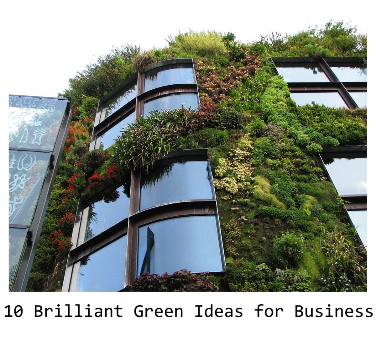 10 Brilliant Green Business Ideas!