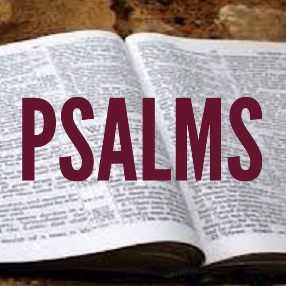 Psalms vs. Proverbs