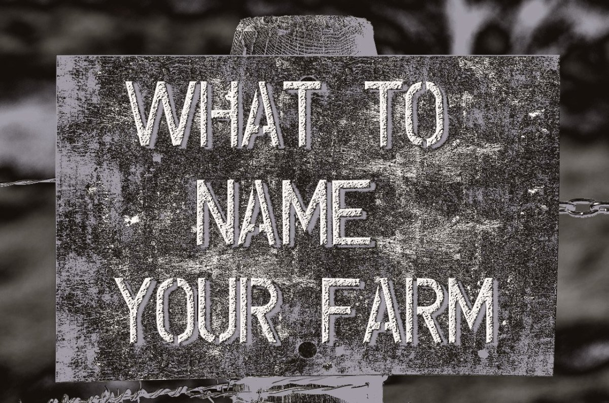 A Guide To Choosing The Best Farm Names Toughnickel First Words
