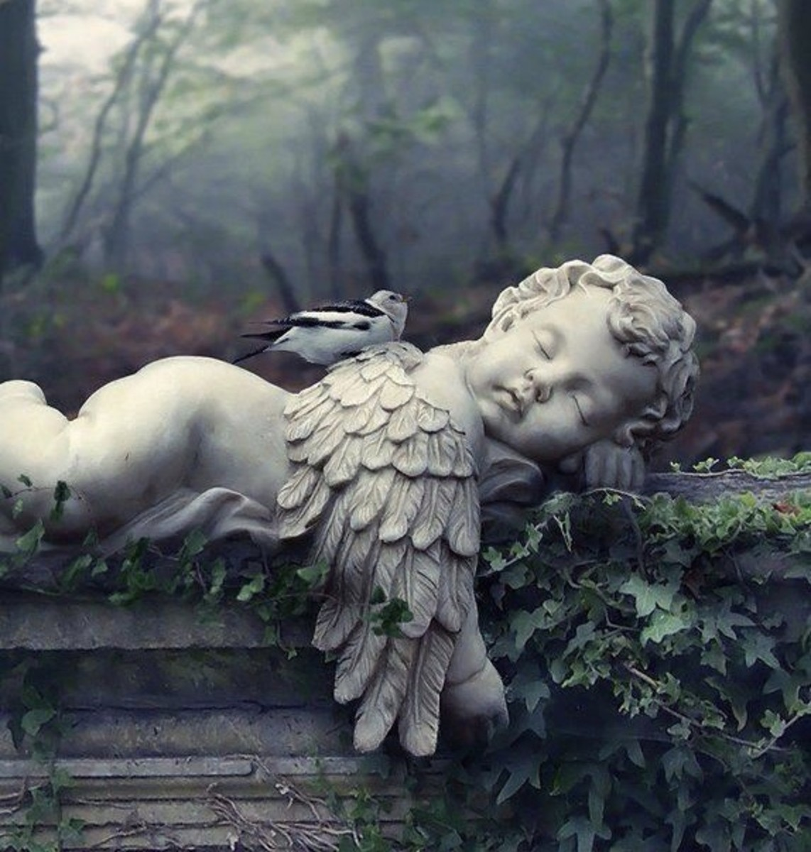 Angels of Haunted Soul - Chapter 1