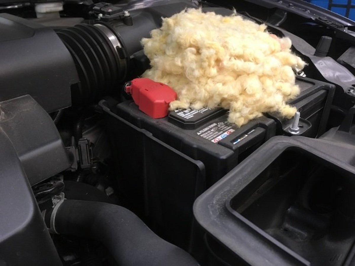 Mouse nest built on top of a car battery