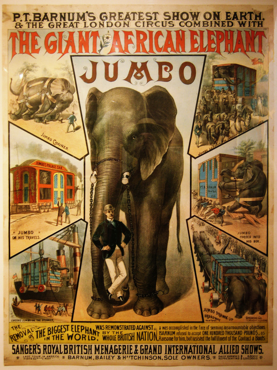 The Tragic Life of Jumbo the Elephant