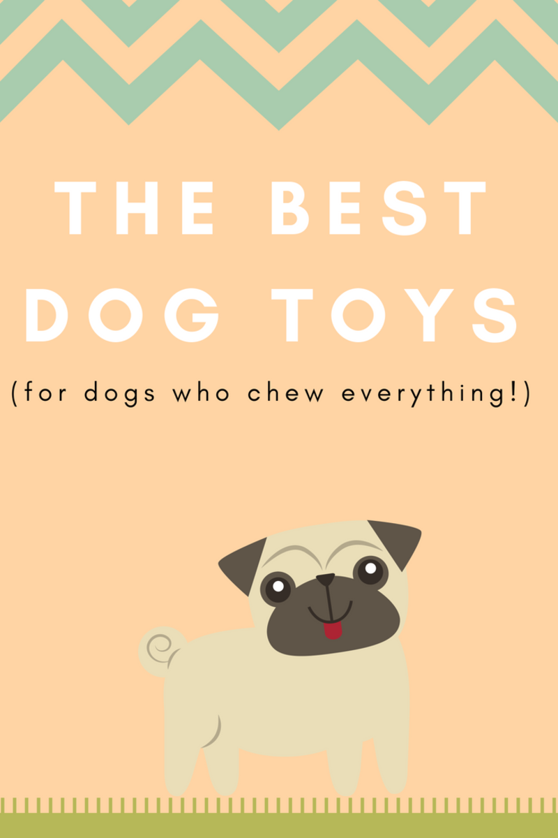 Best Dog Toys for Chewers