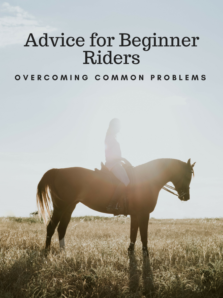 Learn how to overcome common beginner-rider challenges.