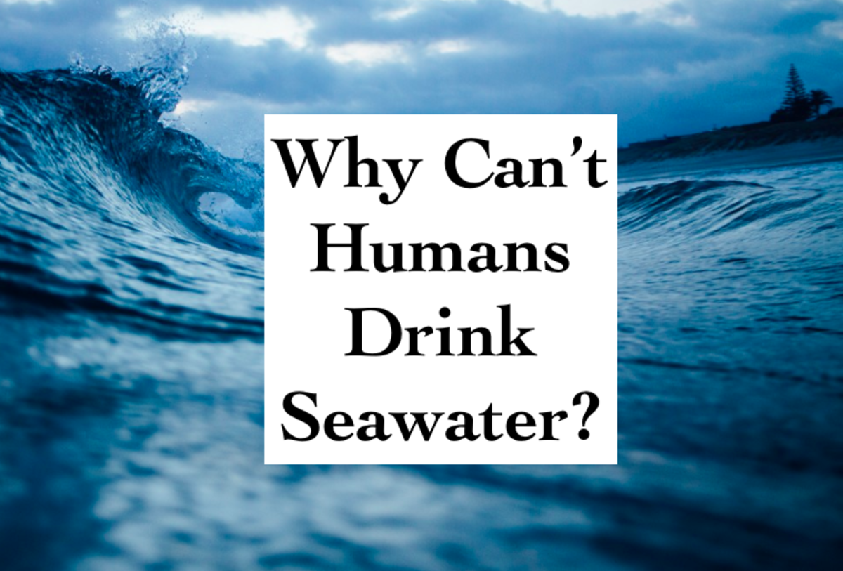 Why Can't Humans Drink Seawater?