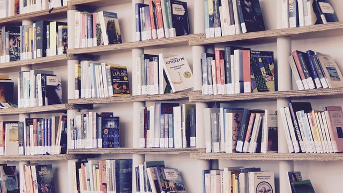 Rediscover the Library: 5 Reasons to Get a Library Card as an Adult