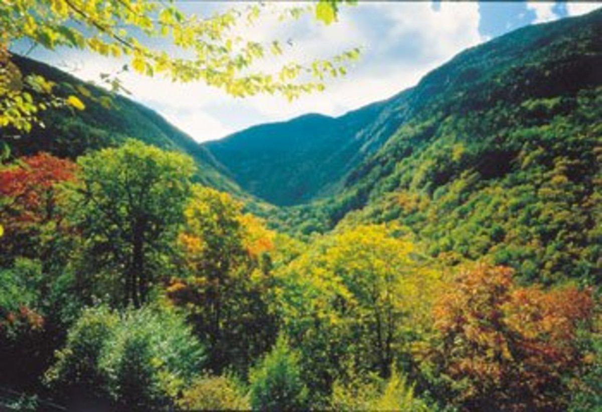 Popular Hiking Spots Near Burlington, Vermont