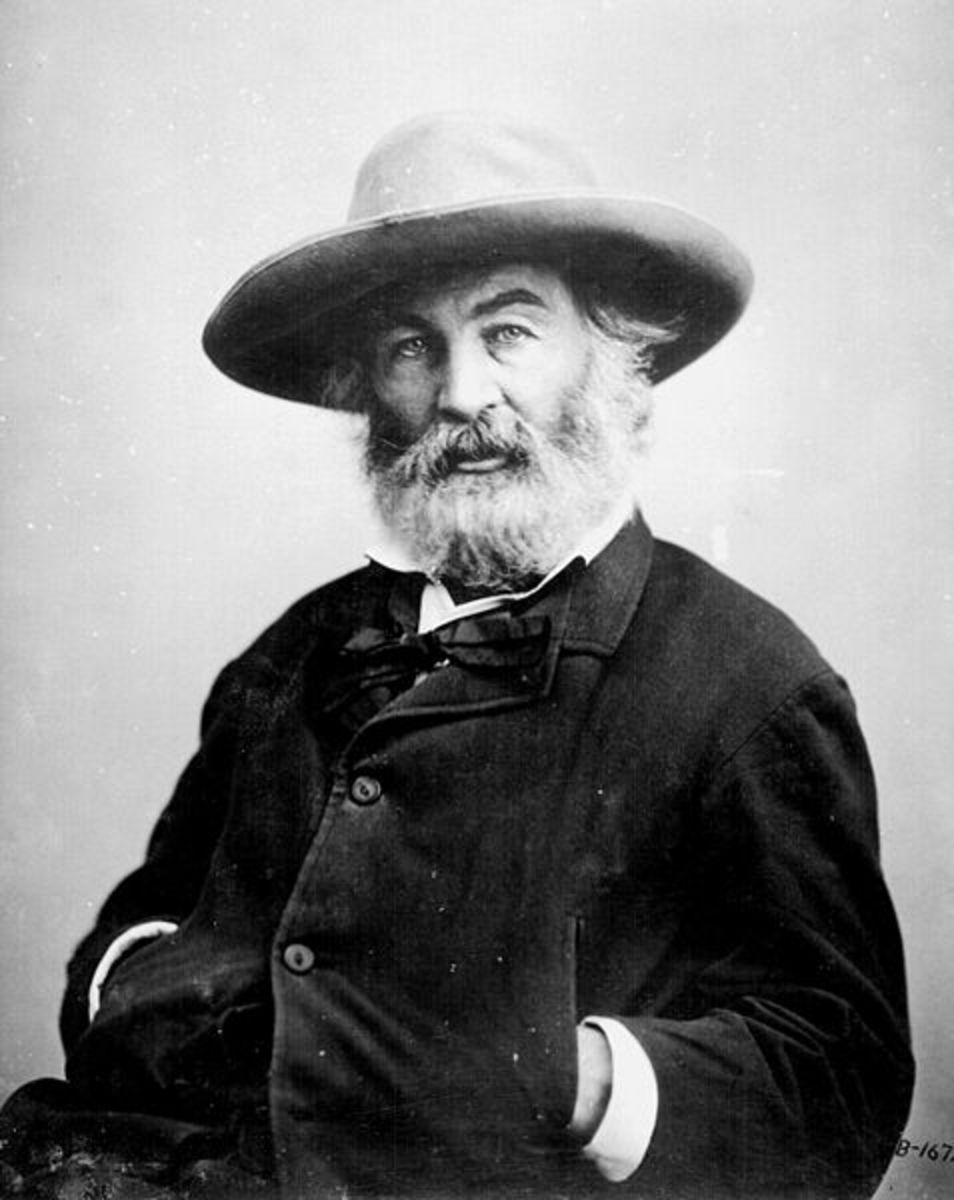 Analysis of Poem Patroling Barnegat by Walt Whitman