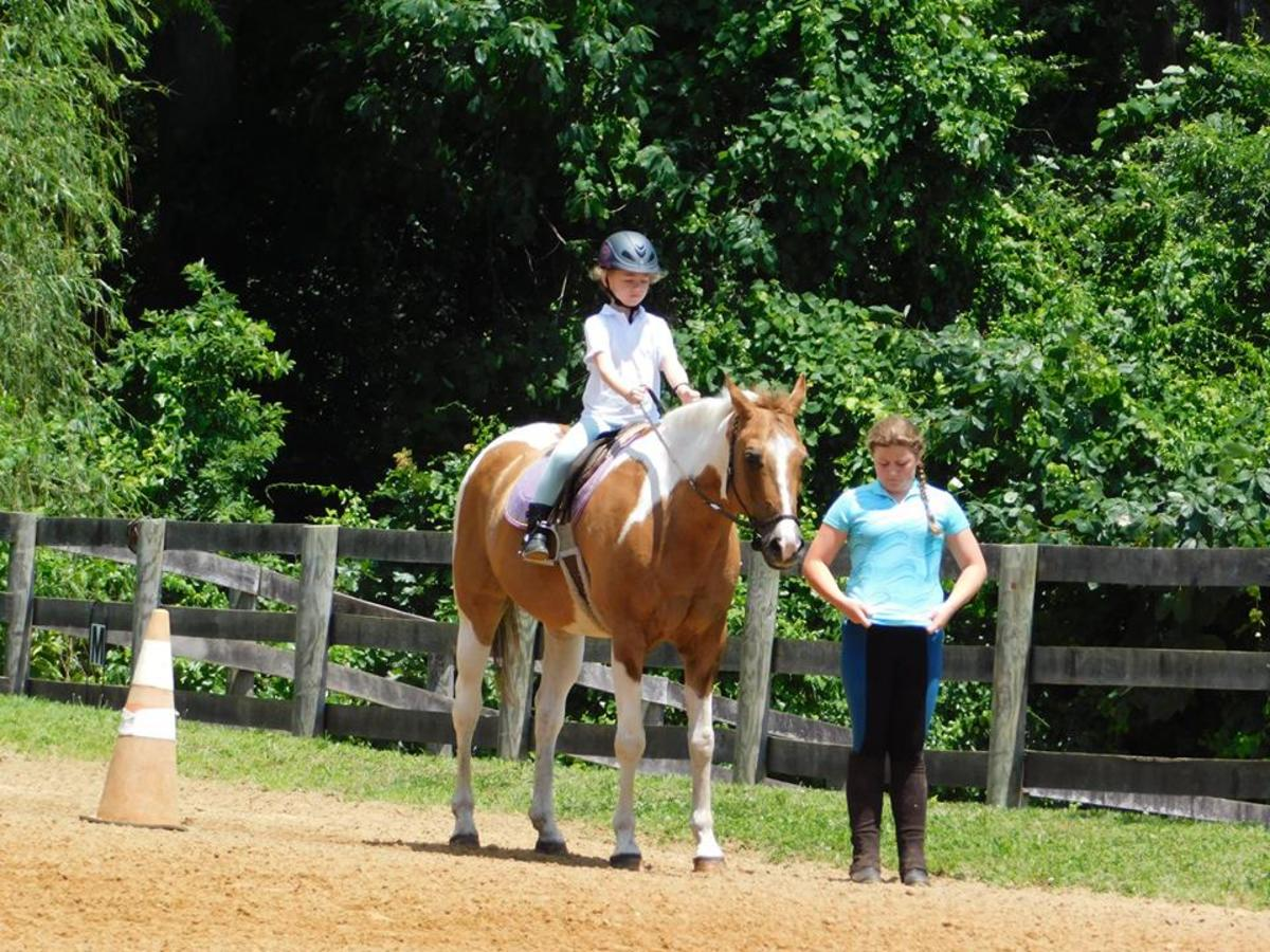 Our farm shows normally go from leadline classes all the way to walk , trot, canter and jumping. That is the great thing about it you can make it your own